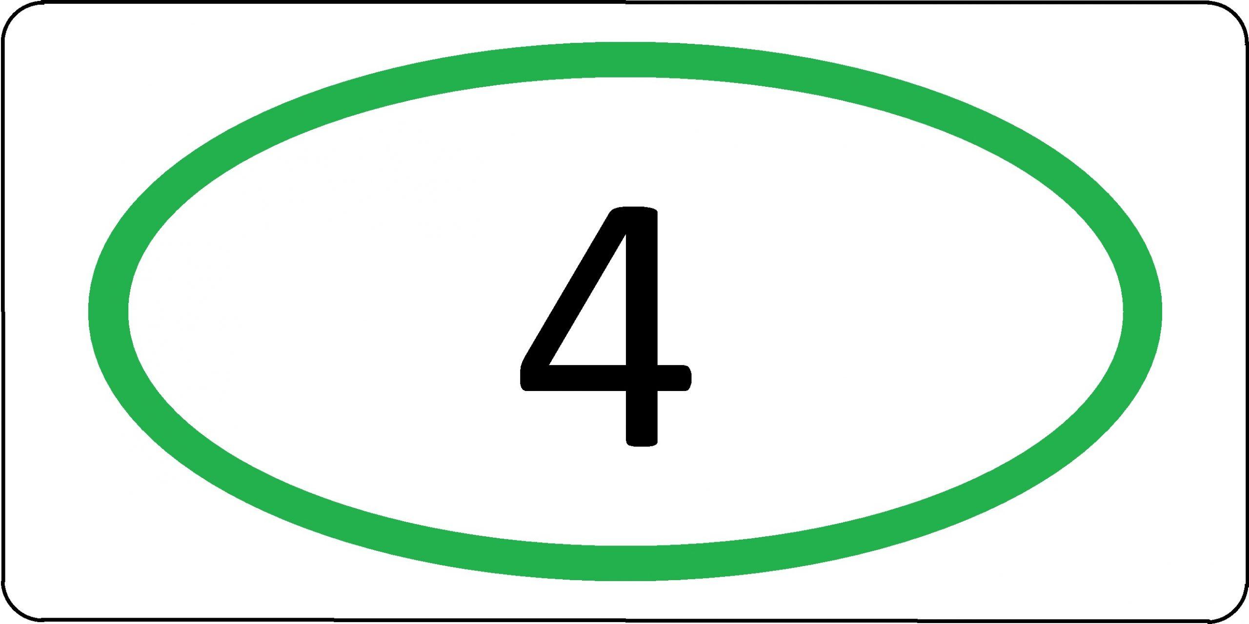 Экологический класс транспортного средства №4