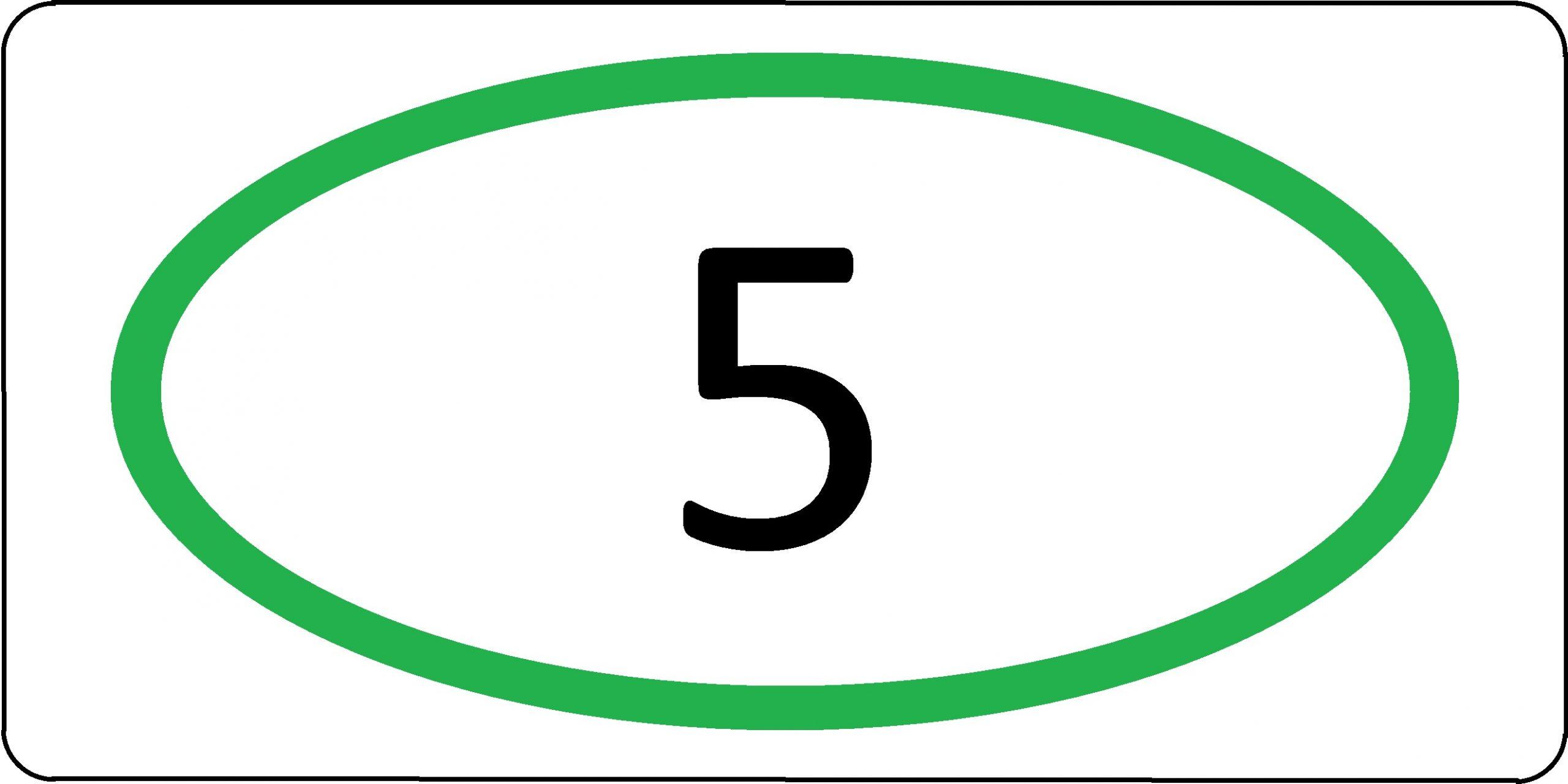 Экологический класс транспортного средства №5